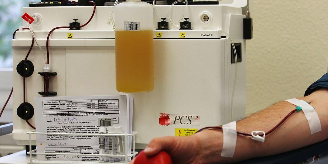 Как проходит донация крови и плазмы